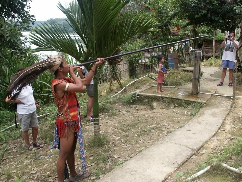 Les Dayaks - Bornéo Borneo20