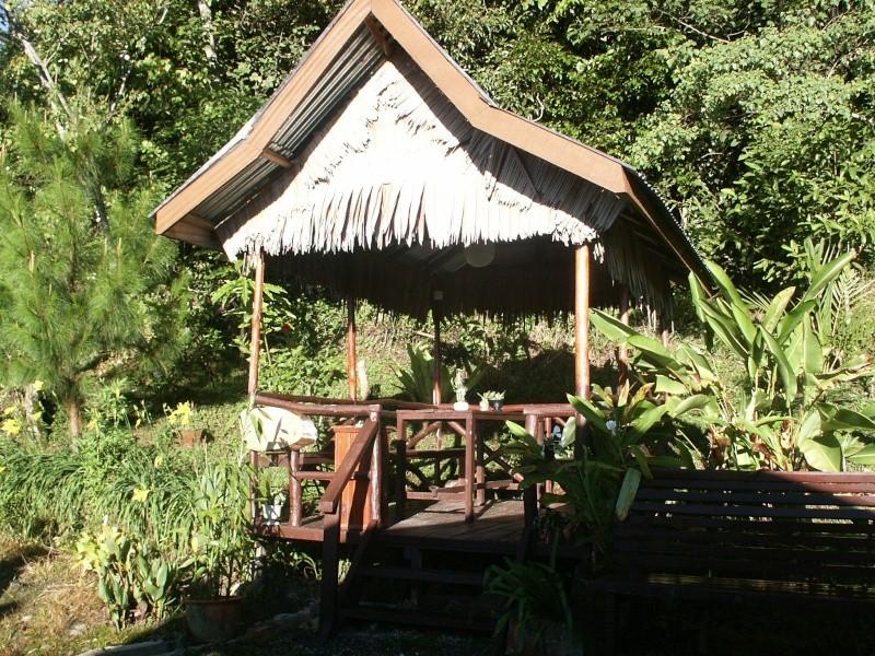 Les envois des photos des membres TSGE sur PANORAMIO - Page 5 Borneo22