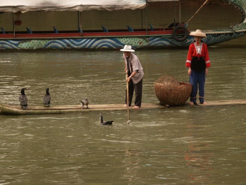 Le pêcheur aux cormorans - Chine Chine010