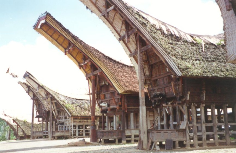 Le pays Toraja - Indonesie Photo_25