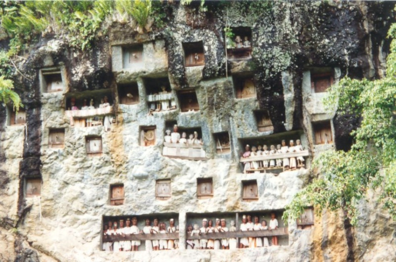 Le pays Toraja - Indonesie Photo_28