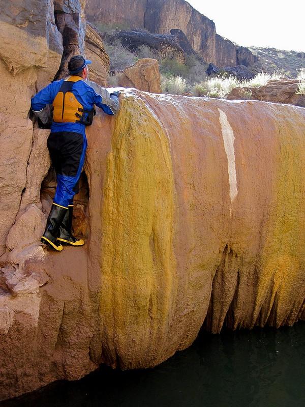 Pumpkin Spring – Grand Canyon - USA Pumpki13