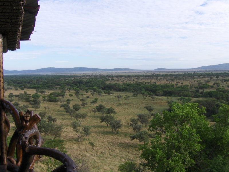 Campements de Safari - Tanzanie Tanzan11