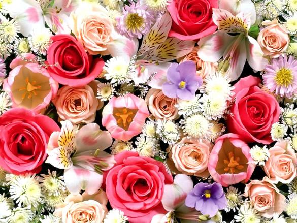 bon anniversaire florence 91 Fleurs27
