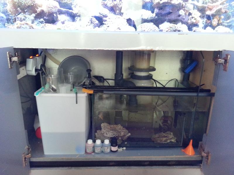 "Présentation de mon aquarium ""caterham"" 20130714"