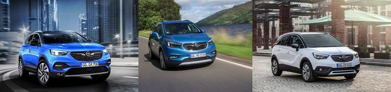 2017 - [Opel] Grandland X [P1UO] - Page 21 Compar10