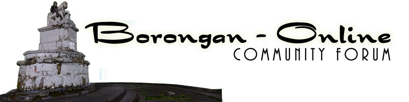 Borongan Online Community