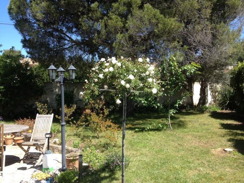 Floraisons printanières 2014 - Page 2 Img_0821