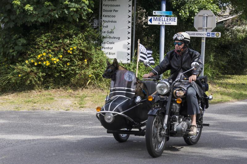 37e tour de Bretagne en véhicules anciens _dsc7212