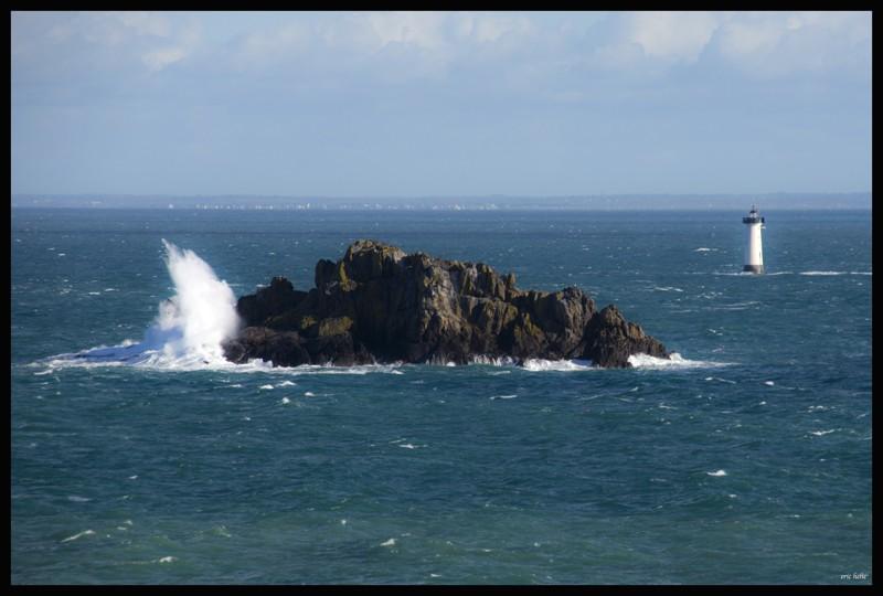 Pointe du Grouin- Le Herpin  Dsc03210