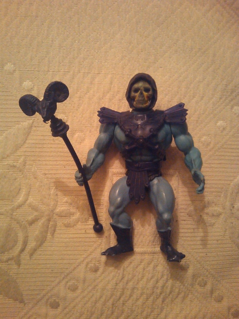 cerco he man e scheletor completi per collezione 2014-053