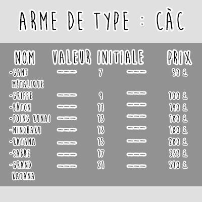L'équipement Armeca10