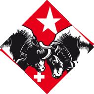 "Le ""Blitzgewehr"" Bavarois (fusil Werder) Logo_h10"
