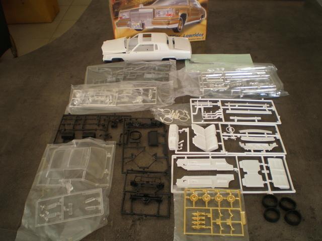 vente de 2 maquettes P1010011