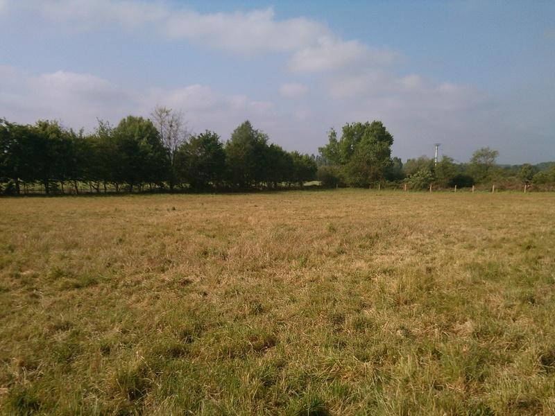 Journal des prairies 2.5 ha : photos du drone + video Img_2035