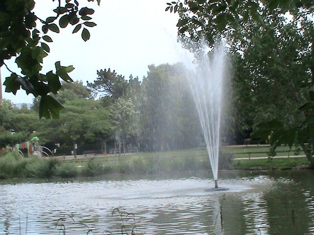 Un très beau jardin dans ma ville Dsc04967
