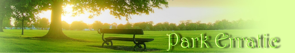 Park Erratic