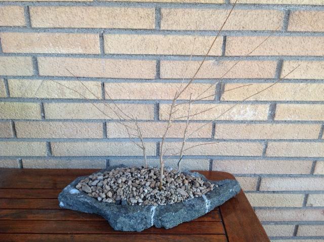lastra/vaso in peperino Img_0719