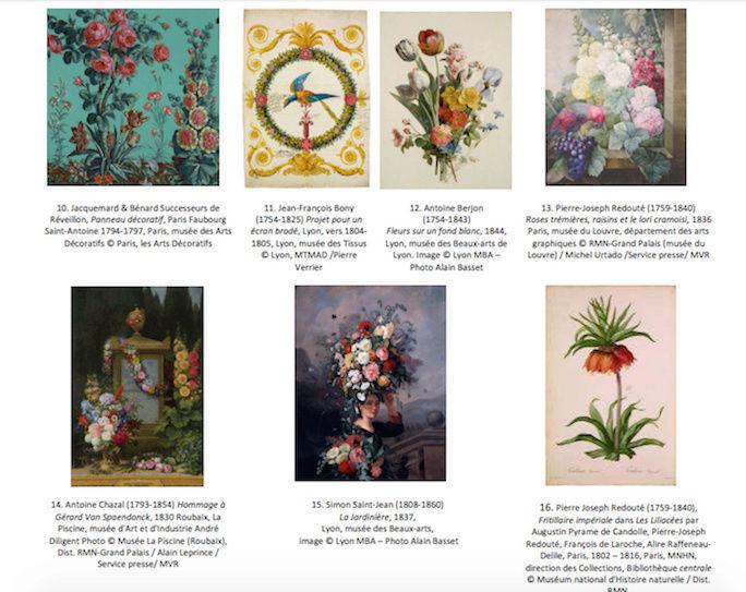 Exposition : Le pouvoir des fleurs, Pierre-Joseph Redouté. Musée de la vie romantique (Paris) Captu145