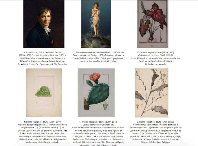 Exposition : Le pouvoir des fleurs, Pierre-Joseph Redouté. Musée de la vie romantique (Paris) Captu146