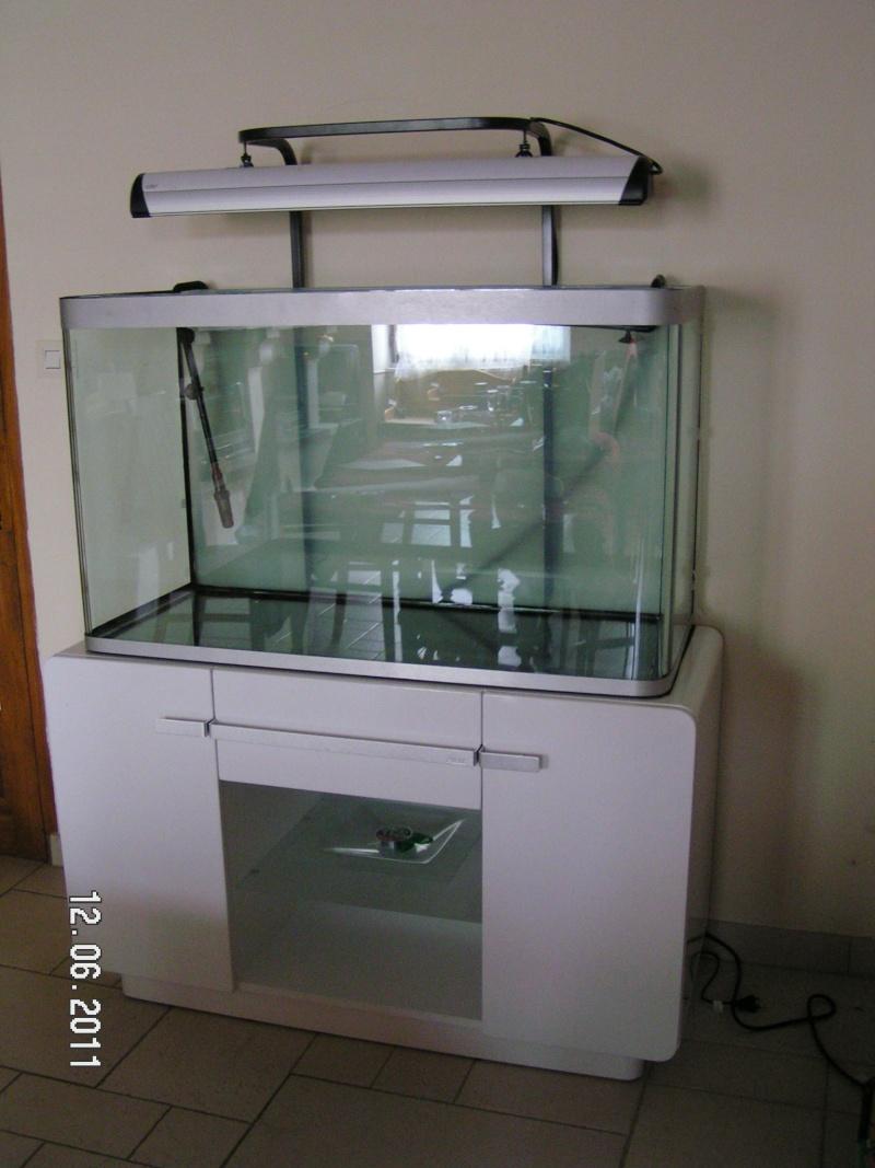 Eclairage aquarium Osaka_10