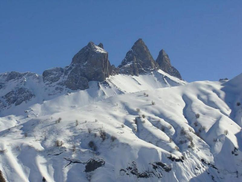 Que la montagne .... Basse_12