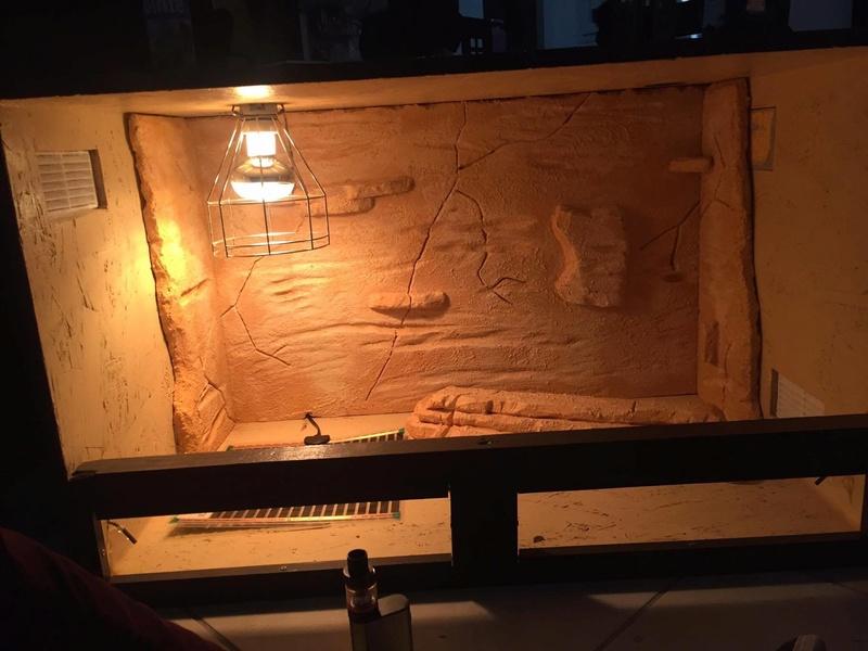 Construction  d'un terrarium pour mon gecko - Page 2 16930910