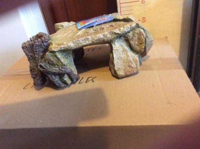 Construction  d'un terrarium pour mon gecko - Page 2 16990910