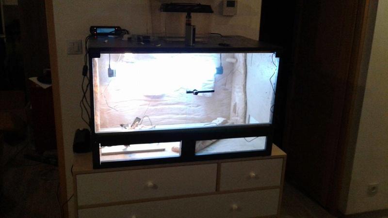 Construction  d'un terrarium pour mon gecko - Page 3 17101210