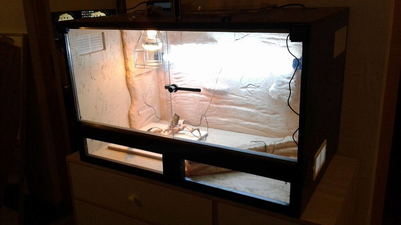 Construction  d'un terrarium pour mon gecko - Page 3 17101510