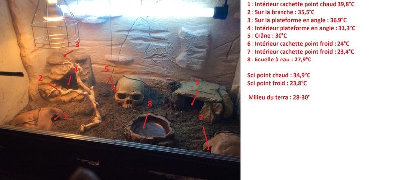Construction  d'un terrarium pour mon gecko - Page 3 Tempte10