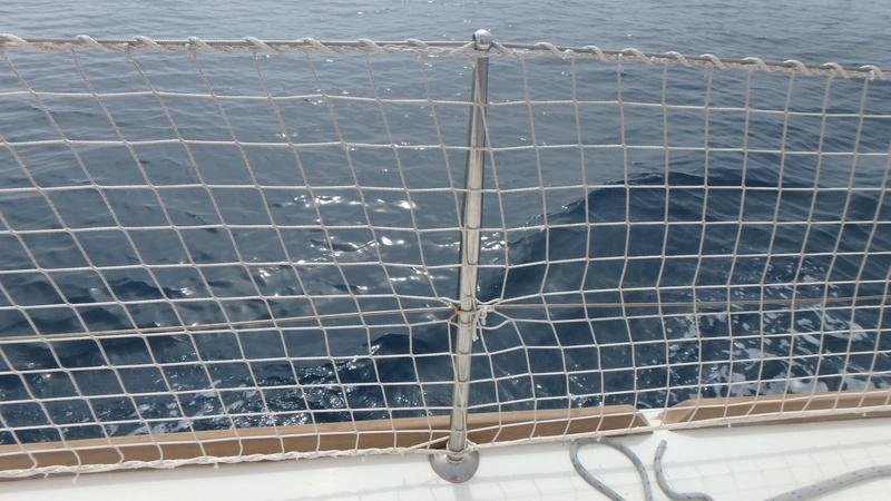 Filets de filières sur nos voiliers modernes P4100011