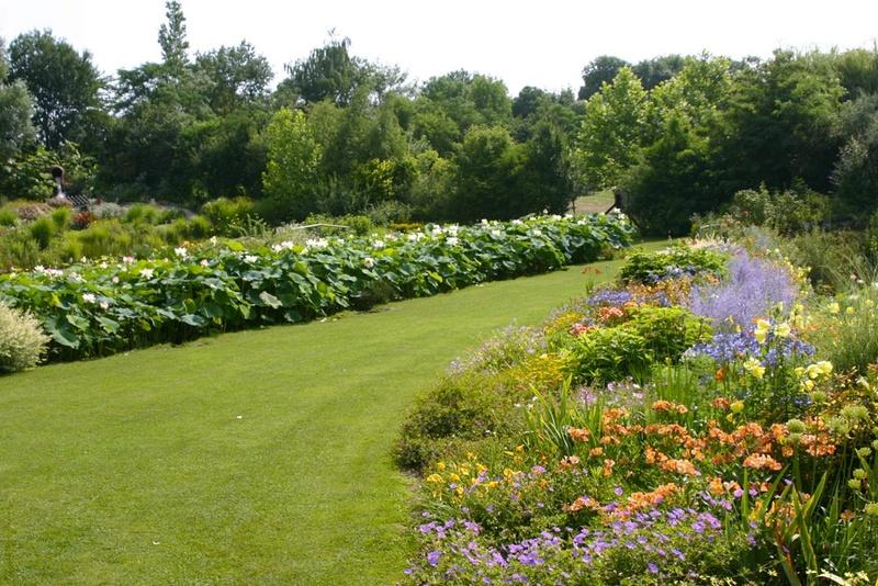 (81) Le jardin des Martels - Giroussens Jardin10