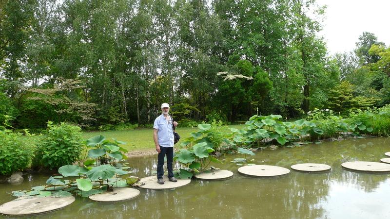 Aquatiques du Jardin des Martels P1140314