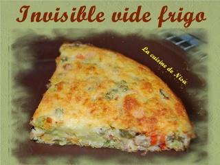 Invisible vide frigo Invisi12
