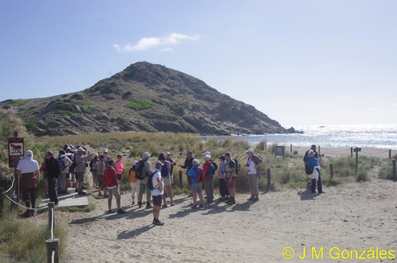 Voyage à Minorque, mai 2017 - 6 : Vendredi 19 mai : Sa Mesquiba , Es Grau _igp1415