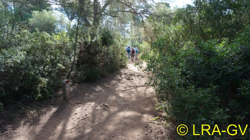Voyage à Minorque, mai 2017 - 5 : Jeudi 18 mai : Cala Mitjana, Cala Trebaluger  Dsc05721