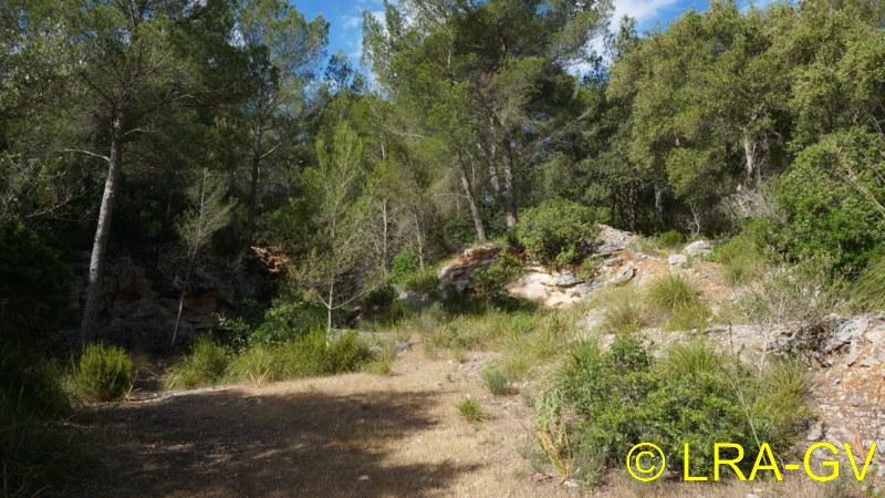 Voyage à Minorque, mai 2017 - 5 : Jeudi 18 mai : Cala Mitjana, Cala Trebaluger  Dsc05723