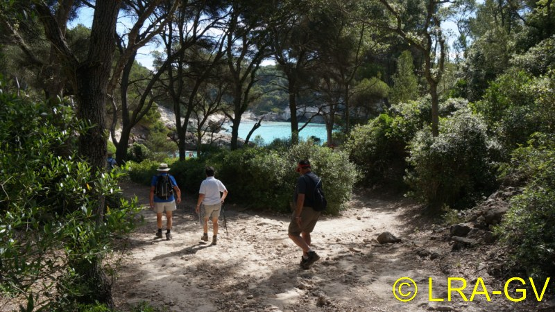Voyage à Minorque, mai 2017 - 5 : Jeudi 18 mai : Cala Mitjana, Cala Trebaluger  Dsc05727