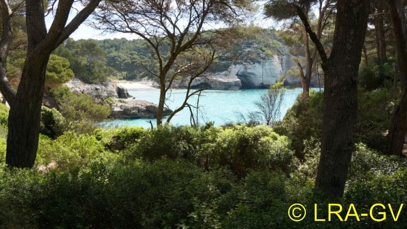 Voyage à Minorque, mai 2017 - 5 : Jeudi 18 mai : Cala Mitjana, Cala Trebaluger  Dsc05728
