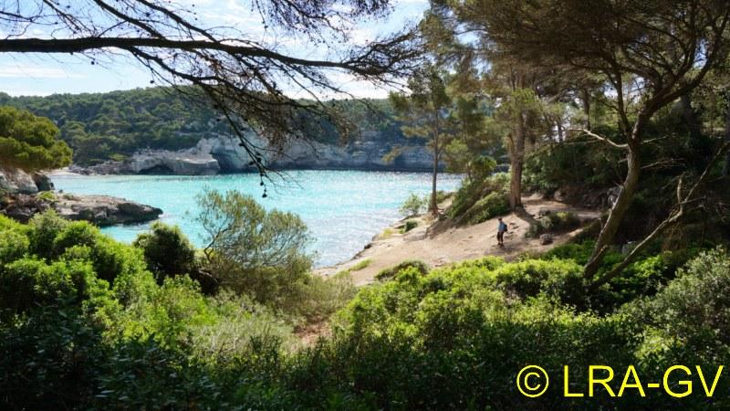 Voyage à Minorque, mai 2017 - 5 : Jeudi 18 mai : Cala Mitjana, Cala Trebaluger  Dsc05729