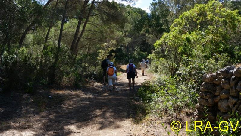 Voyage à Minorque, mai 2017 - 5 : Jeudi 18 mai : Cala Mitjana, Cala Trebaluger  Dsc05731