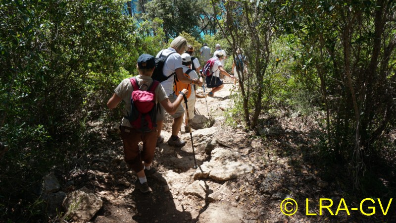 Voyage à Minorque, mai 2017 - 5 : Jeudi 18 mai : Cala Mitjana, Cala Trebaluger  Dsc05732