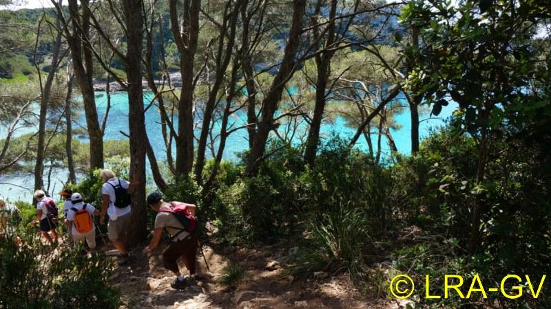 Voyage à Minorque, mai 2017 - 5 : Jeudi 18 mai : Cala Mitjana, Cala Trebaluger  Dsc05733