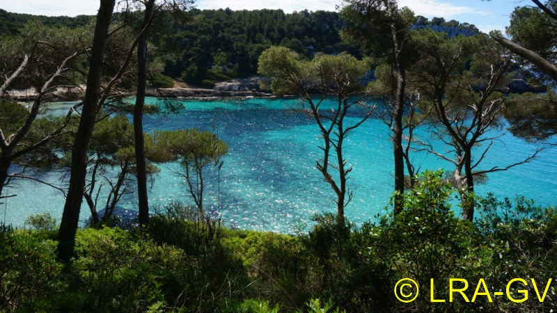 Voyage à Minorque, mai 2017 - 5 : Jeudi 18 mai : Cala Mitjana, Cala Trebaluger  Dsc05734
