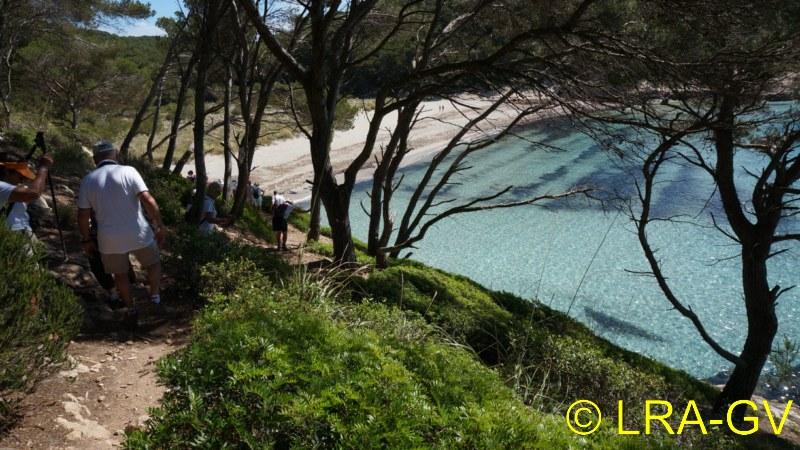 Voyage à Minorque, mai 2017 - 5 : Jeudi 18 mai : Cala Mitjana, Cala Trebaluger  Dsc05810