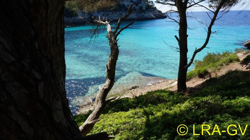Voyage à Minorque, mai 2017 - 5 : Jeudi 18 mai : Cala Mitjana, Cala Trebaluger  Dsc05811
