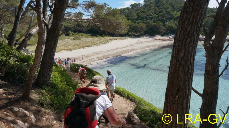 Voyage à Minorque, mai 2017 - 5 : Jeudi 18 mai : Cala Mitjana, Cala Trebaluger  Dsc05812