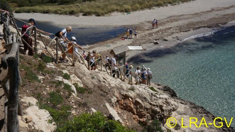 Voyage à Minorque, mai 2017 - 5 : Jeudi 18 mai : Cala Mitjana, Cala Trebaluger  Dsc05813