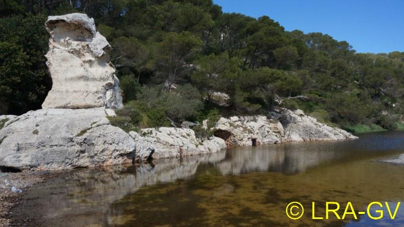 Voyage à Minorque, mai 2017 - 5 : Jeudi 18 mai : Cala Mitjana, Cala Trebaluger  Dsc05816